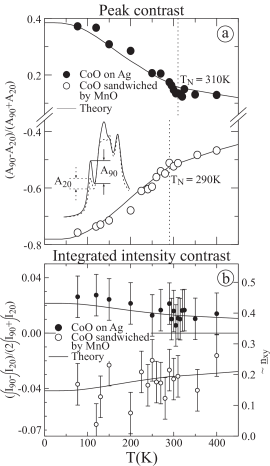 Temperature dependence of the polarization contrast in the Co