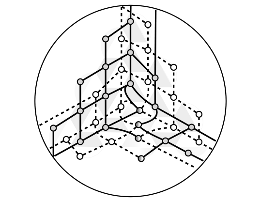 Construction of the excitation graph