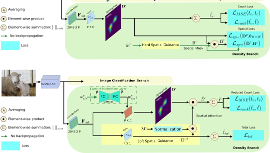 Overview of our RLC architecture, which comprises an image classification branch and a density branch. The image classification branch has an identical structure as the LC architecture, and is trained on all categories (