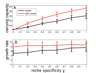 The average phenotype in the population after 1000 time steps (generations of the wild-type population) as a function of the niche specificity
