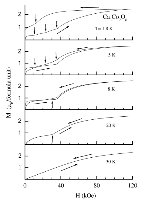 Isothermal magnetization (M) as a function of magnetic field (H) for Ca