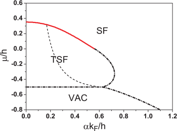 Typical phase diagram in the