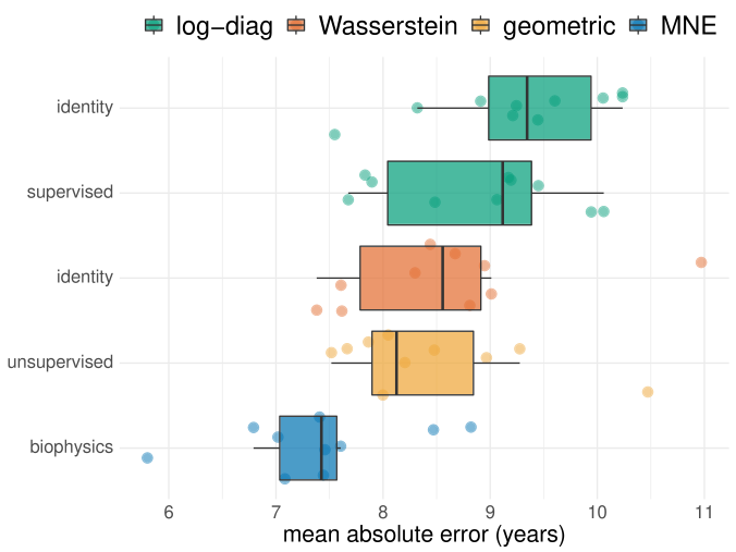 Age prediction on Cam-CAN MEG dataset for different methods, ordered by out-of-sample MAE. The y-axis depicts the projection method, with identity denoting the absence of projection. Colors indicate the subsequent embedding. The biophysics-driven MNE method (blue) performs best. The Riemannian methods (orange) follow closely and their performance depends little on the projection method. The non-Riemannian methods log-diag (green) perform worse, although the supervised projection clearly helps.