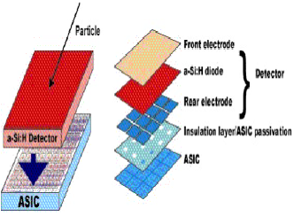 Amorphous silicon detector. Left: a schematic of a hydrogenated amorphous Si detector on ASIC. Right: The time behaviour of the signal for different polarization voltages showing the intrinsically fast charge-collection properties.