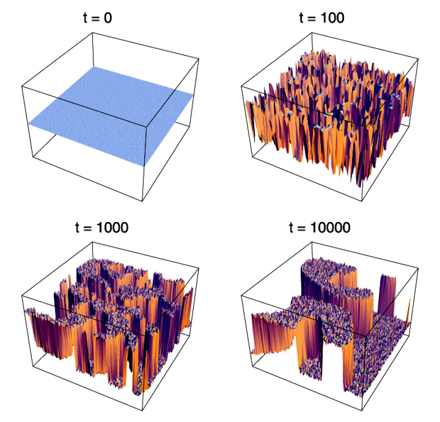 Formation of domains in the process of symmetry breaking in the model (