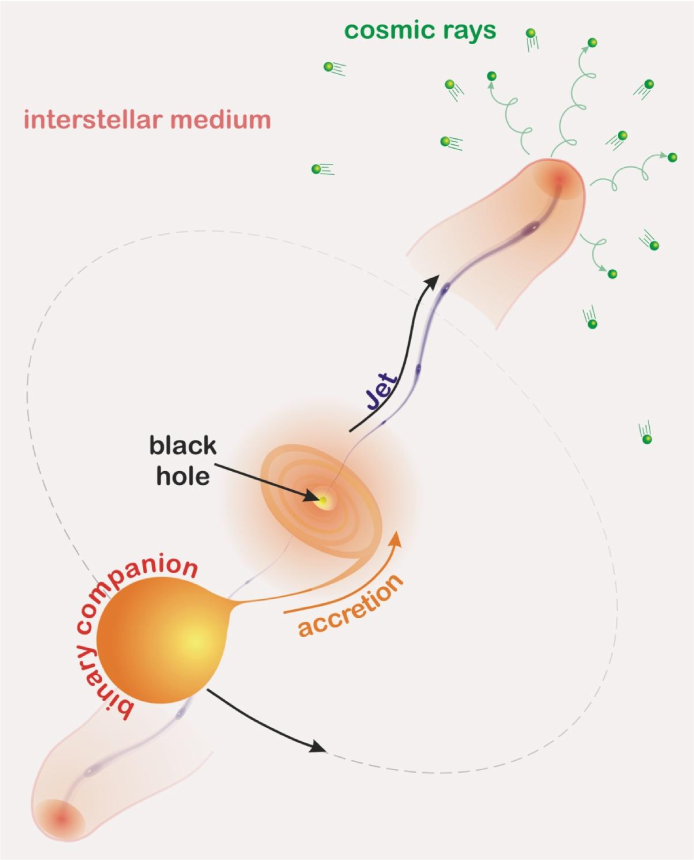 Cartoon of the proposed model of CR production in microquasars: The interface between the relativistic jet and the ISM is a natural site for the production and release of relativistic particles.