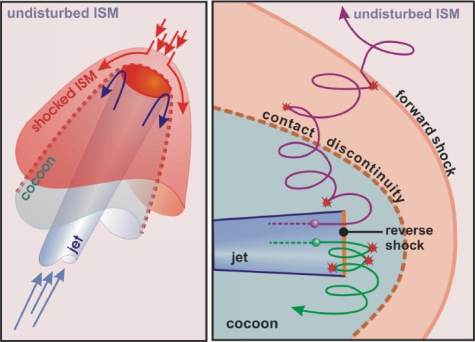Cartoon of the standard picture of the interface between jet and ISM (