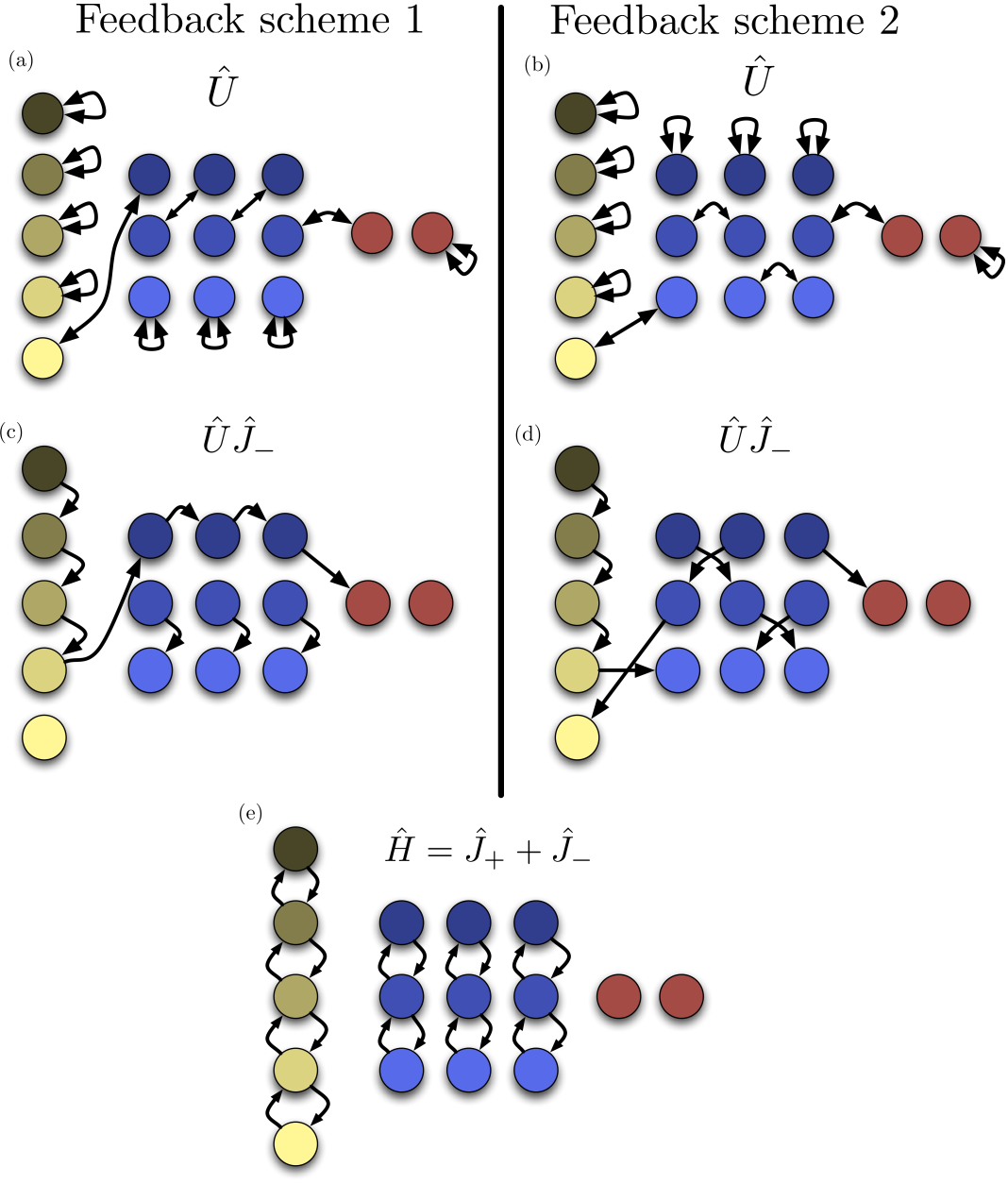 Schematics of two different feedback schemes. Diagrams (a) and (b) show the connections between states induced by