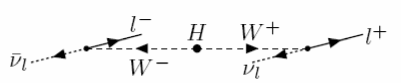 Diagram showing the preferred flight direction of charged leptons in