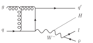 A sample of one-loop Higgs-Strahlung diagrams, with no closed fermionic loop.