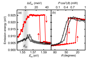 Bistability observed in excitation energy and polarization dependence for a (9,8) tube with a length of 2.01