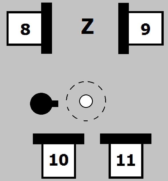 Variable Z.
