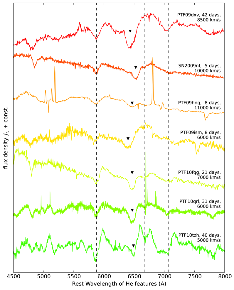 Representative spectra of the PTF-detected SNe in our sample. All spectra are redshifted by the indicated velocity relative to the rest frame such that their characteristic helium absorption features are at their rest wavelengths at