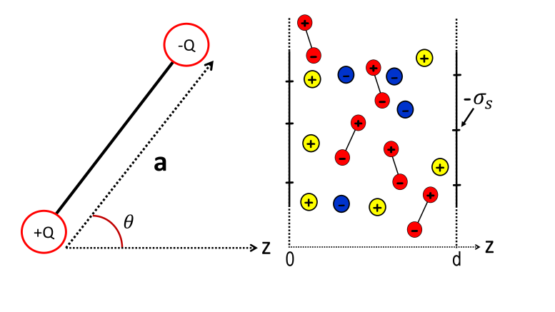 (Color online) Left : Charge geometry of the solvent molecules with size