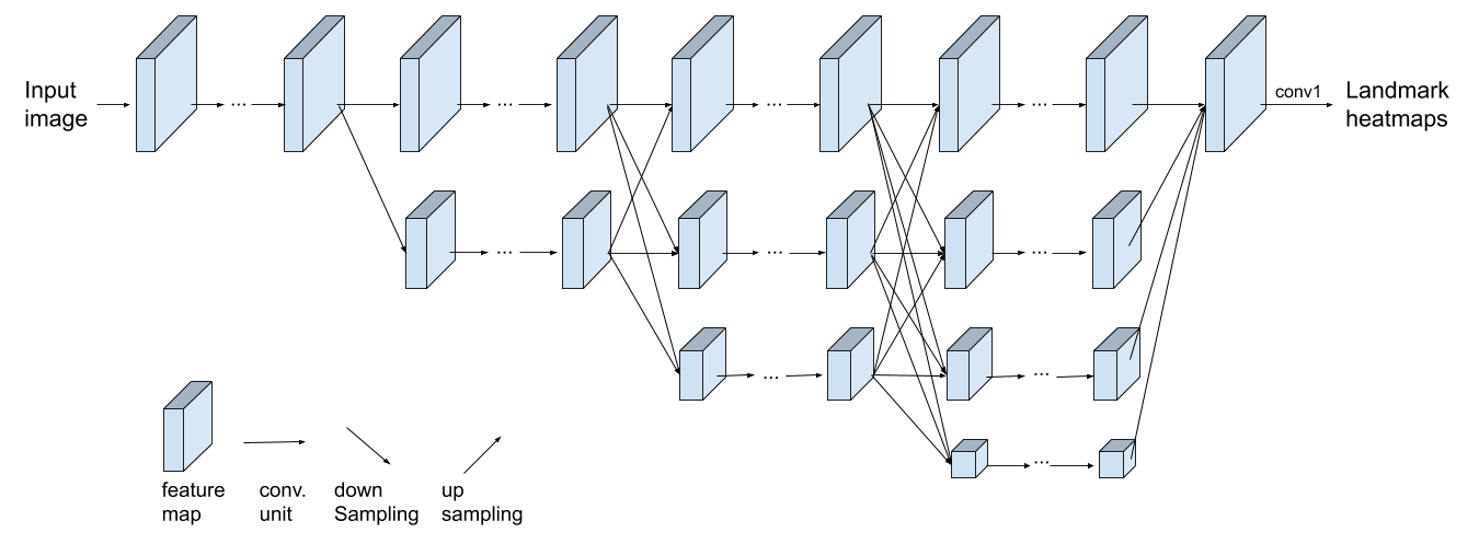 Illustration of the HRNet architecture in our landmark regression model.