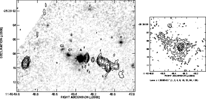 Grey scale representation of the near infrared continuum emission of the radio galaxy MRC 1017