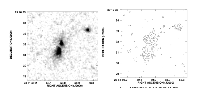 : Grey scale representation of the near infrared continuum emission of the radio galaxy MRC 2224