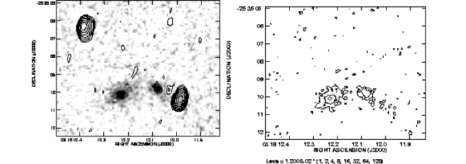 : A grey scale representation of the near infrared continuum emission of the radio galaxy MRC 0316