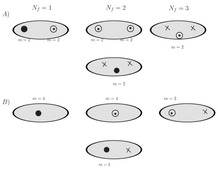 A) The Hitchin system for various SU(2) QCDs, black dots represent type II irregular singularity; Circle represents type I irregular singularity; Cross represents the regular singularity. The number is the integer part of the order of pole. B) The singularity structure for the corresponding AD theory found from the above QCD.