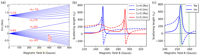 (a) The hyperfine-Zeeman energy levels