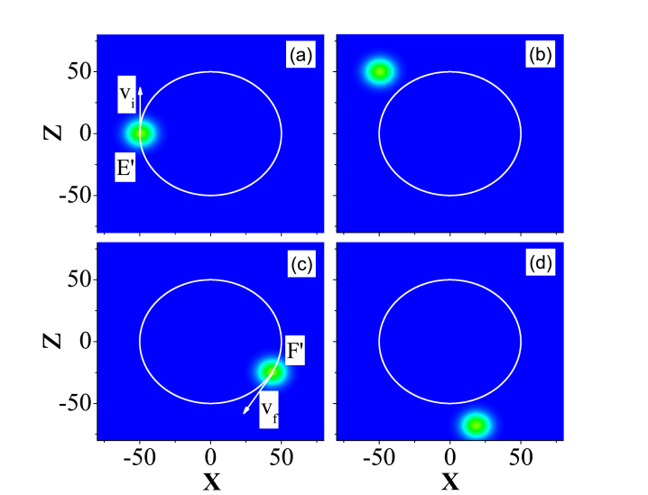 (Color Online) Numerical simulation of the wavepacket dynamics of tripod-scheme cold atoms, with the involved laser beams being slowly displaced along a circle shown in Fig. 4. The white circle illustrates a possible circular trajectory traced by the center of the moving wavepacket.