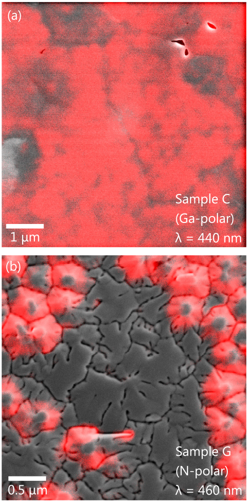 (Color online) Representative top-view monochromatic CL and superimposed SEM images of Ga- (a) and N-polar (b) In