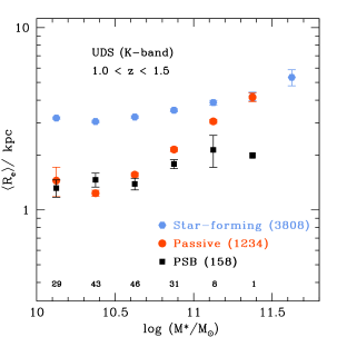 A comparison of the galaxy mean size–stellar mass relation for star-forming, passive and post-starburst galaxies in two redshift bins. The numbers in parentheses denote the number of galaxies in each sample, while the number of PSBs per mass bin is shown at the bottom of each plot. Errors on mean sizes represent the standard error on the mean (though we note the small number of PSBs in the highest mass bins). The vertical lines denote the 95% completeness limits (all below