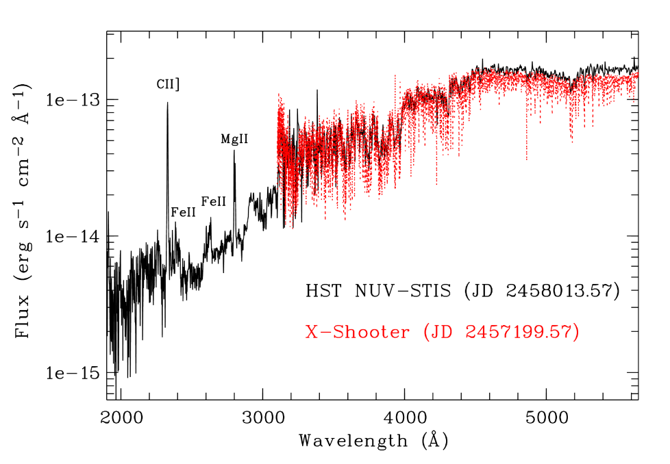 Hubble Space Telescope NUV and STIS spectra of MYLup are shown as the black continuous line. The red dotted line represents the X-Shooter spectrum acquired more than 2 years earlier as indicated by the JD in the labels. The spectra are corrected for reddening as described in the text.