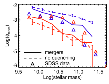 Stellar mass functions split into blue and red galaxies (colors) for a simulation with no quenching (dashed lines), a simulation with merger quenching (solid lines), and SDSS data (triangles). Inducing powerful outflows after galaxy mergers does suppress the growth of massive blue galaxies, but it does little to increase the number of red sequence galaxies above that produced in the no-quenching simulation.