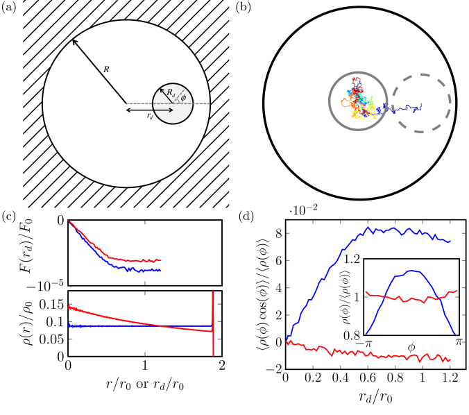 (a) The 2D system of a disk inside a circular box of active particles used in (b-d). (b) The trajectory of a disk in a
