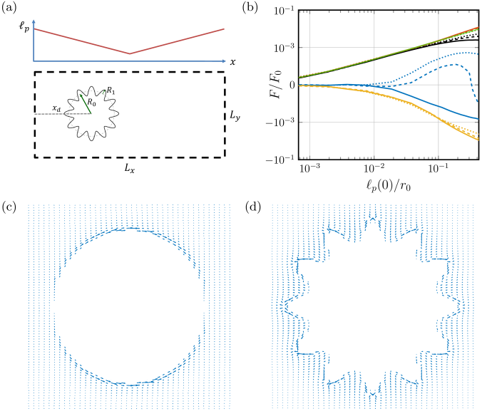 The effect of the persistence length and disk edge modulation on the force. (a) Sketch of simulated system in b-d: A disk with a modulated edge inside a rectangular 2D system with periodic boundary conditions, and