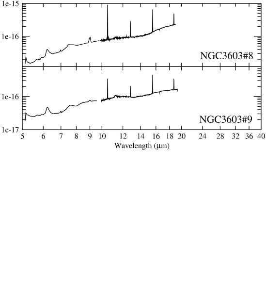 Spectra of the MIR sources in NGC3603 (Table