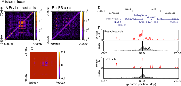 Simulations of the
