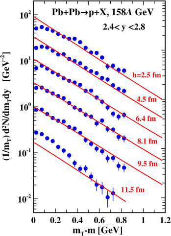 (Color online) Transverse-mass distributions of protons in the rapidity range