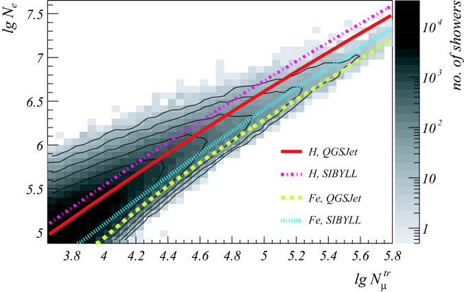 Two-dimensional shower size spectrum of