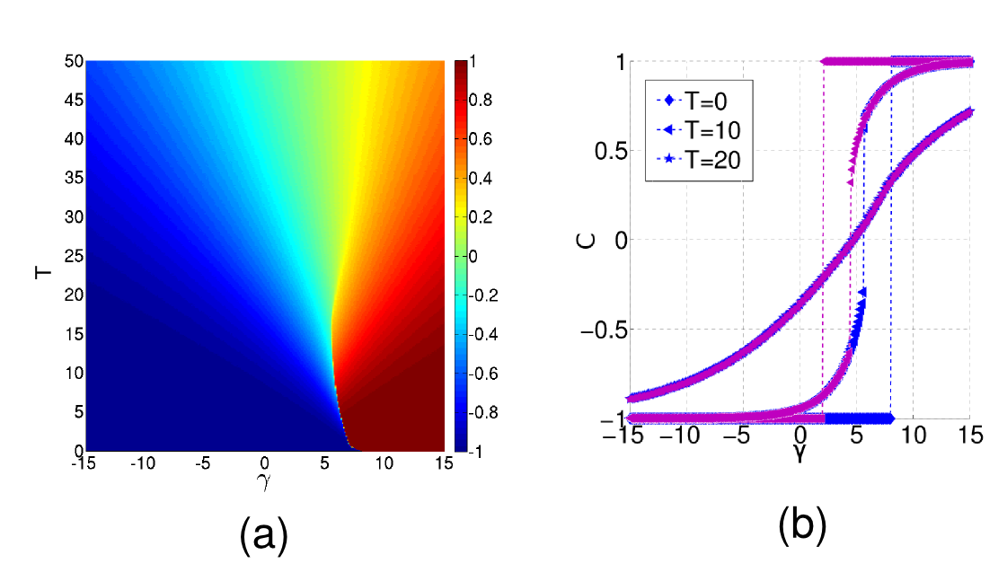 (a) Average internal coherence