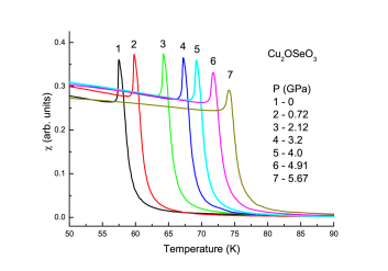 (Color online) Magnetic susceptibility
