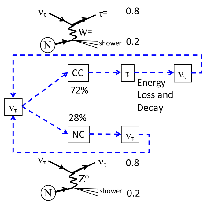 Diagram of the