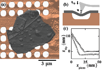 (a) An AFM height image of a suspended flake (