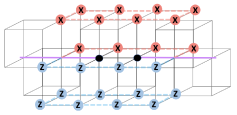 A detailed plot of the Wilson line operator