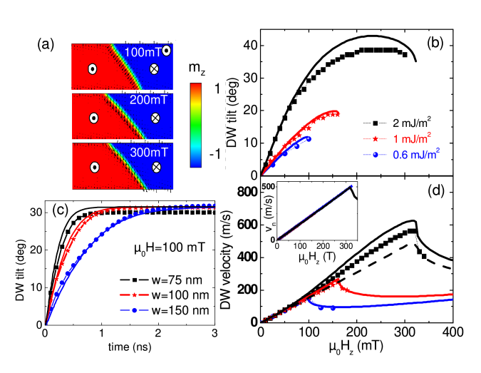 Dynamics of the DW driven by an external magnetic field