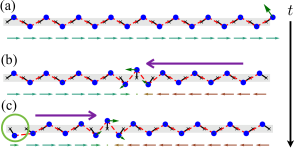 The evolution of a flipper soliton arising from integrating the zero mode of a finite chain (