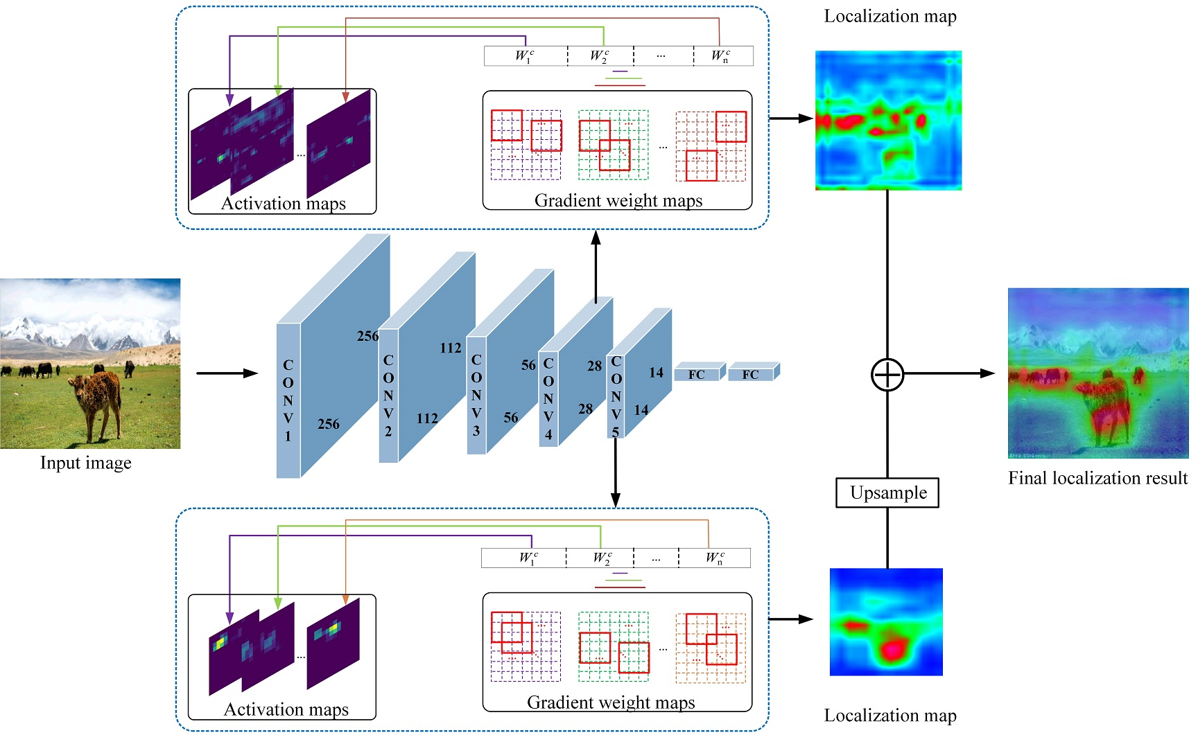 The overview of our multi-scale discriminative region discovery method for weakly-supervised object localization. Based on existing classification network, such as VGGnet, we firstly compute the gradient weight maps by taking partial derivative of particular class score to the activation maps. Then a discriminative region discovery strategy is applied to generate corresponding localization maps from different convolutional layers (conv4 and conv5). Finally, multi-scale localization maps are fused into more integral one to locate multiple objects of various sizes.
