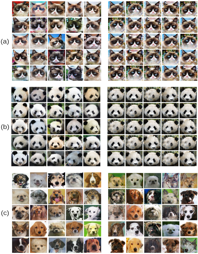 For each dataset, the images are generated by the same set of randomly sampled noises. Images from our model is shown on the left, and the baseline results are on the right. All the model are trained for 50000 iterations with batch size of 8, which is more than enough for both models to converge. On (a) Grumpy-cat and (b) Panda, baseline model shows a clear mode collapse, while our model is generating diverse images; on (c) Animalface-dog, although not mode collapse, the baseline model shows a clear quality disadvantage compared to our model.