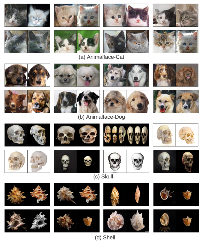 For each image pair, the left is the synthesized image from our model, and the right is the closest image found from the real training data ranked by LPIPS score. Even with only 100 training samples, these uncurated samples show our model is still able to combine the features learned from the real samples and synthesize new compositions.