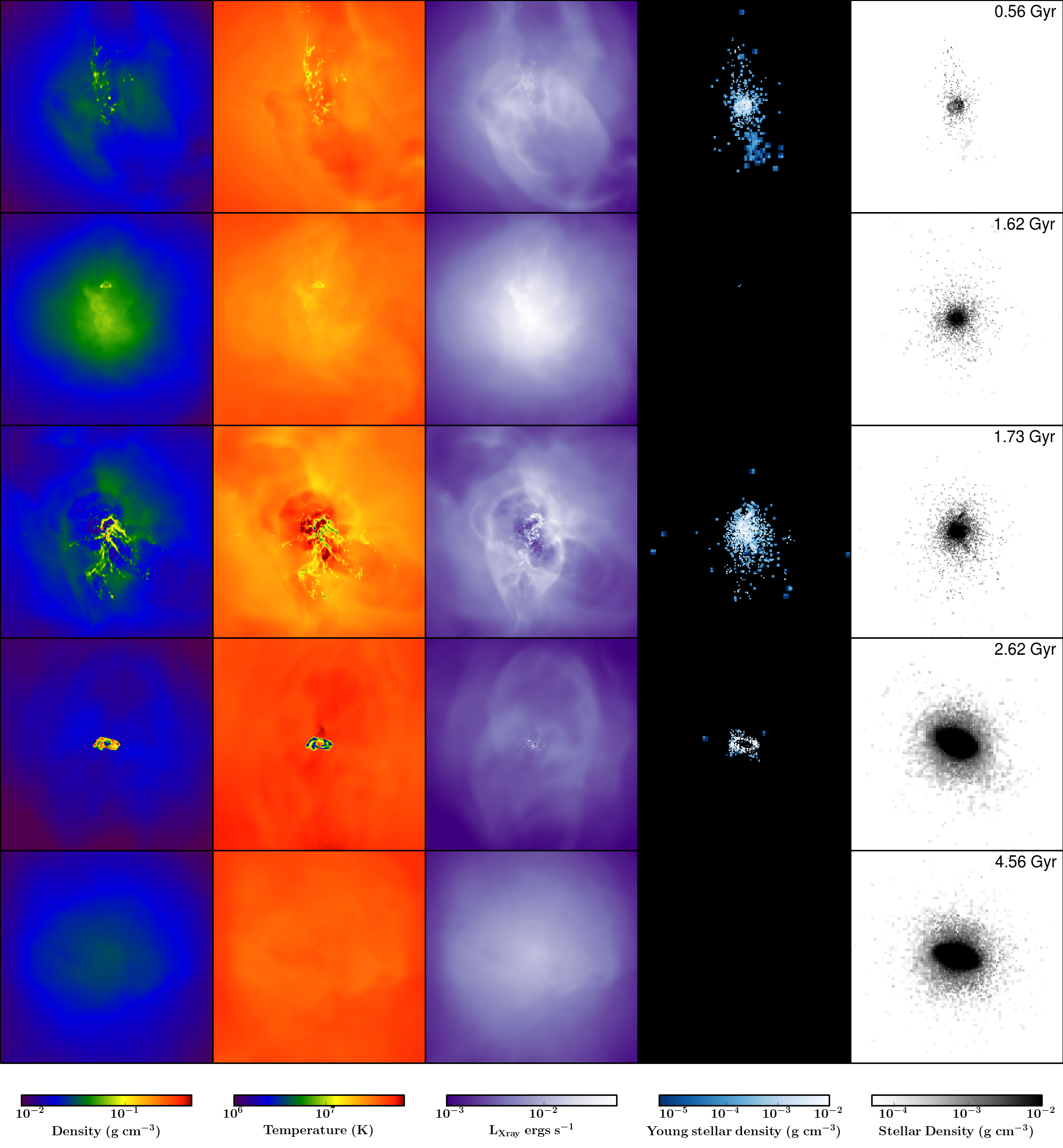 The projected gas density, temperature (weighted by density), X-ray luminosity, young stellar density and stellar density in the central