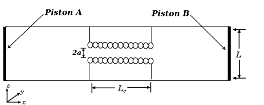 Schematic depiction of the simulation box with the nanotube, reservoirs and fluctuating walls. The cylindrical channel in the center has radius