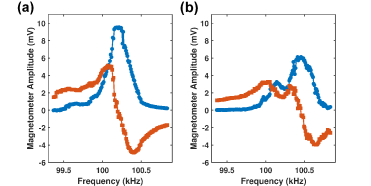 Typical in-phase (blue circles) and out-of-phase (red squares) responses of the magnetometer without magnetic field compensation.