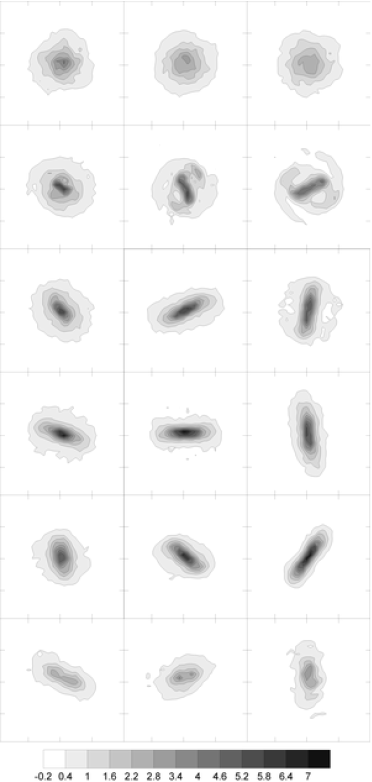 Projected density contours of the first (prograde) disc in units of