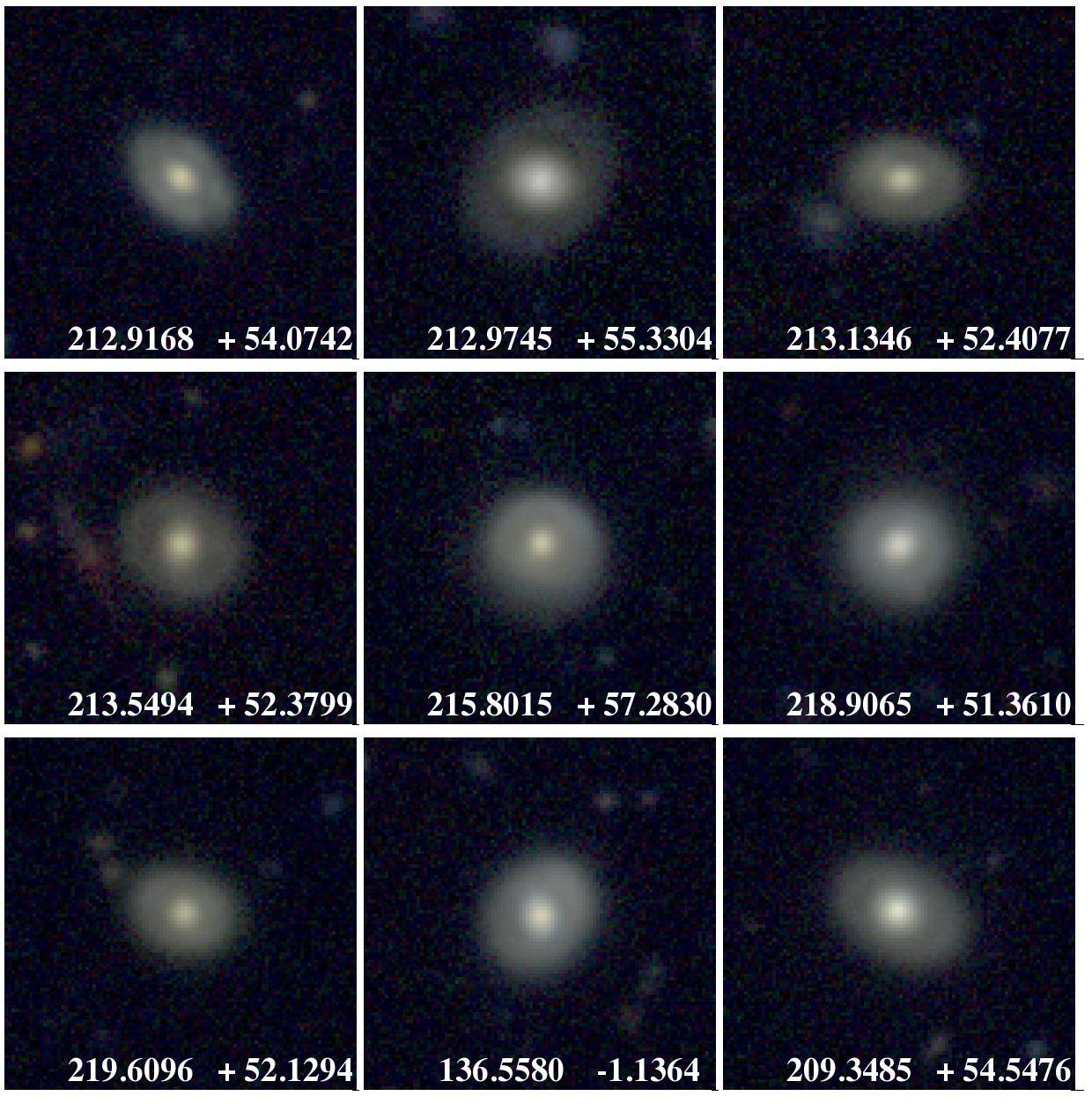 Examples of objects producing false positives in our lens search and that we classify as ring-like galaxies or polar ring galaxies (see text). Among 1 098 lens candidates, we identify 274 of these ring-like galaxies.